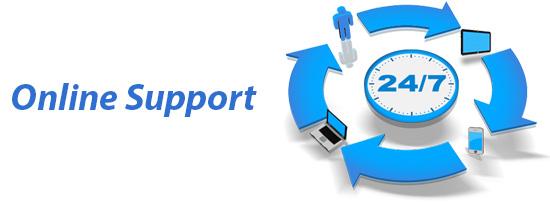 anik-singal-lurn-insider-Online-Support
